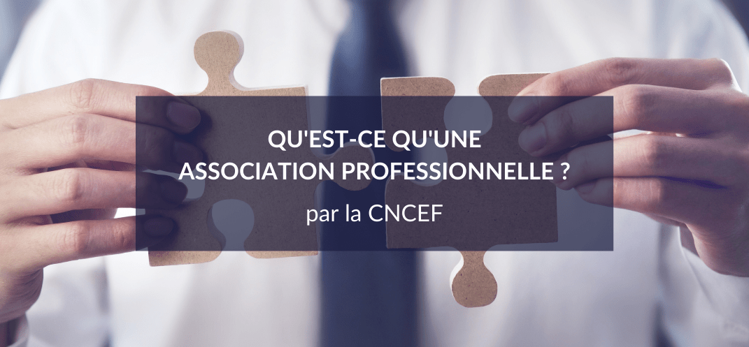 ASSOCIATION_PROFESSIONNELLE_CNCEF