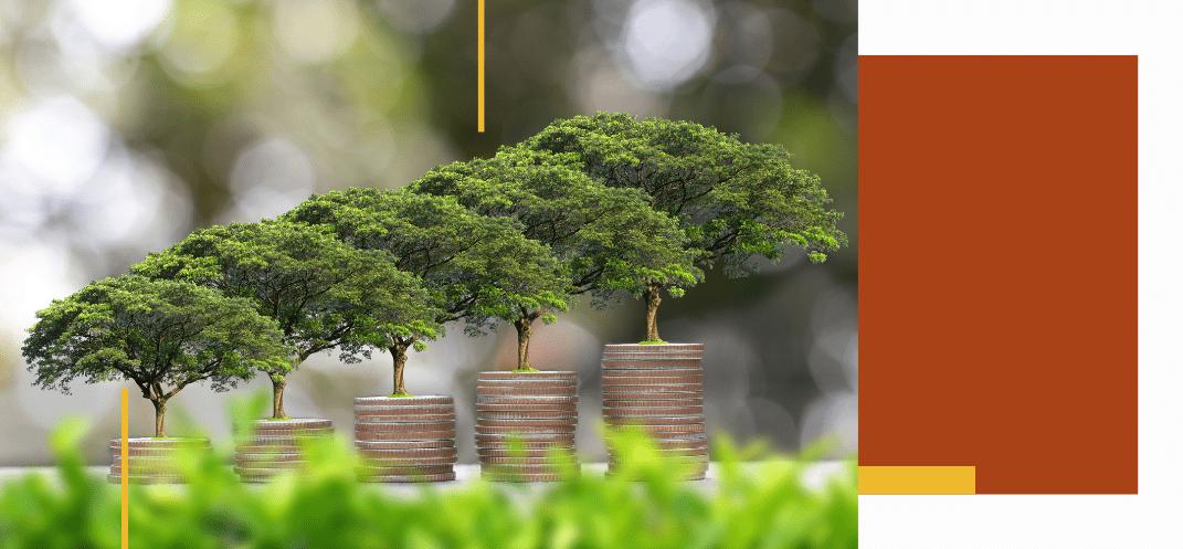 Webinaire CNCEF Patrimoine : Comment expliquer la finance durable à vos clients ? - Mardi 20 avril 2021 à 18h00 - ÉVÈNEMENT TERMINÉ