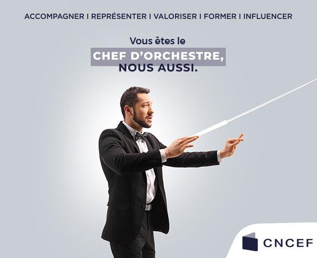 visuel La CNCEF, la Chambre Nationale des Conseils Experts Financiers